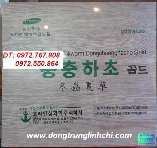 Đông trùng hạ thảo Hàn Quốc, dong trung ha thao, đông trùng hạ thảo dạng nước, nước đông trùng hạ thảo