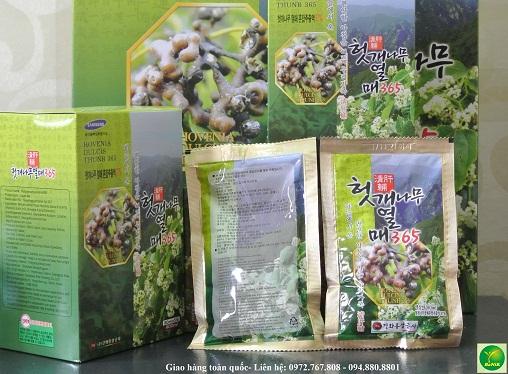 hovenia, hovenia dulcis, hovenia dulcis thunb, thuốc bổ gan, giải rượu